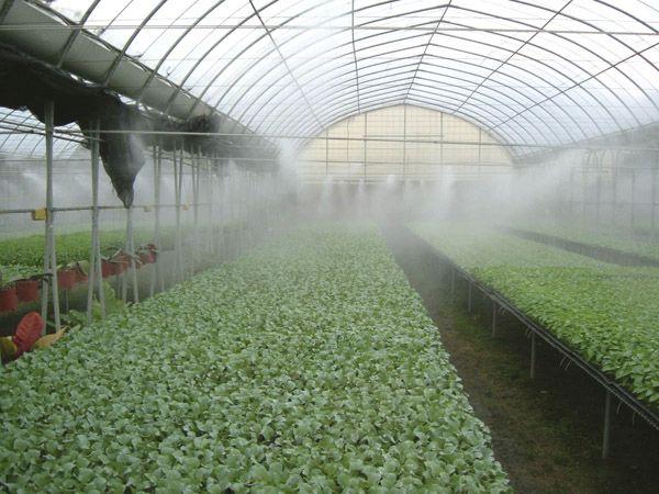 انواع مه پاش های مه آوران صنعت
