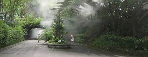 مه پاش پودری مه آوران صنعت